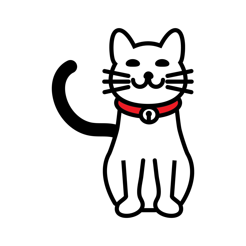 האכלת חתולי רחוב – בעד ונגד